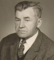 Wiltsch Theodor