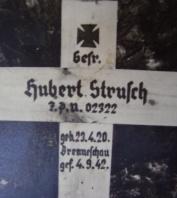 Strusch Hubert